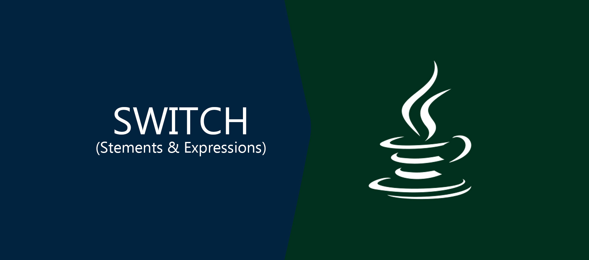 How To Use Switch Statement and Expressions In Java